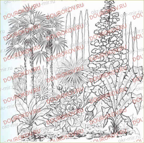 В ботаническом саду - 18