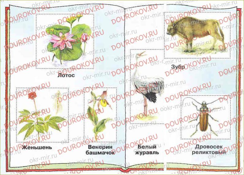 Красная книга России - 18