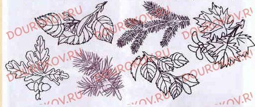 Тема 8. Осень: природа готовится к зиме - 31