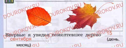 Дневник наблюдений: Осень - 39