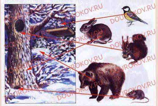 Тема 15. Зима: покой природы - 16