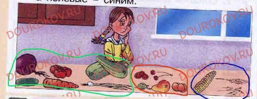 Тема 27. Наши помощники - домашние животные и культурные растения - 29