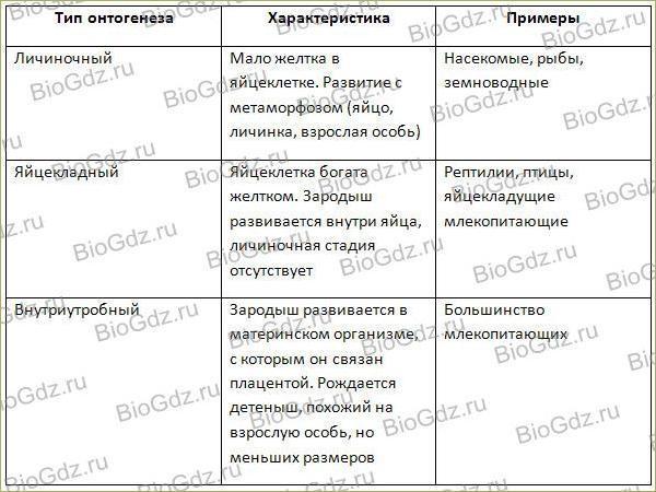 Тема 3.4. Индивидуальное развитие организма (онтогенез) - 1