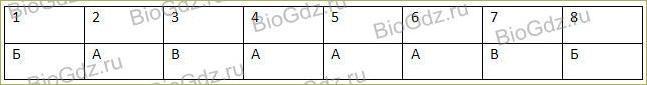 Тема 2.7. Эукариотическая клетка. Цитоплазма. Органоиды - 4