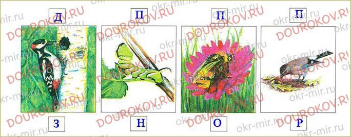 Тема 19. Экологические системы - 38