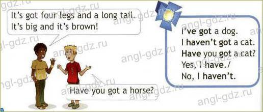 Cows are funny! (B) - 1