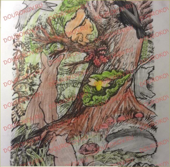 §9. Лес и его обитатели - 1
