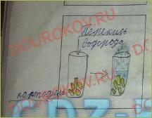 §9. Как узнать, что химическая реакция произошла? - 1