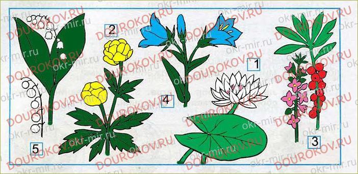 Охрана растений - 6