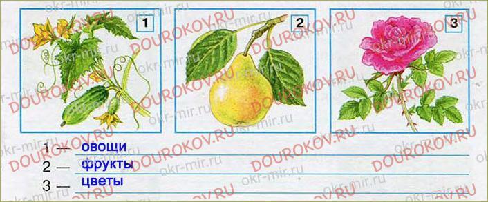 Растениеводство - 36