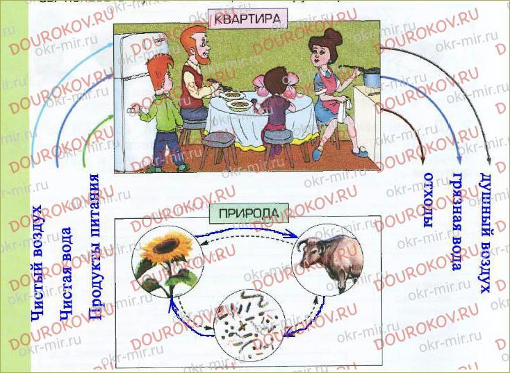 § 7. Живые участники круговорота веществ - 15