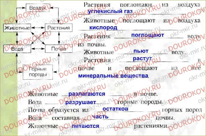 § 10. Жизнь экосистемы - 24