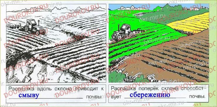 § 11. Почва - важнейшая часть экосистемы - 1