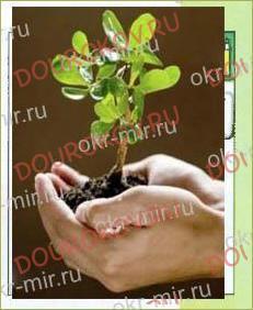 § 11. Почва - важнейшая часть экосистемы - 2