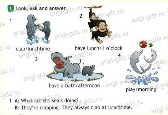 Funny animals! (B) - 1