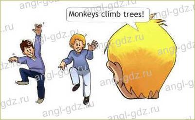 Funny animals! (B) - 5