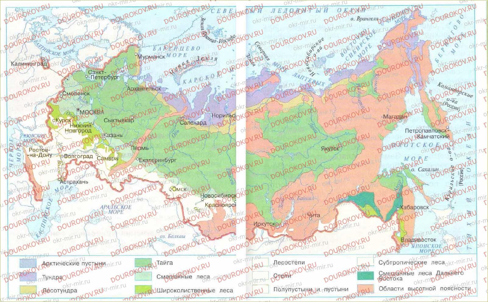 Леса России - 58