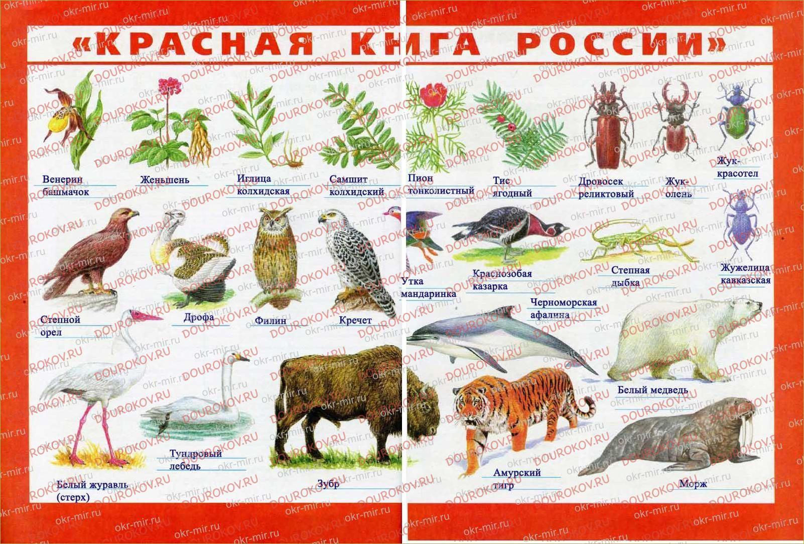 У Чёрного моря - 24