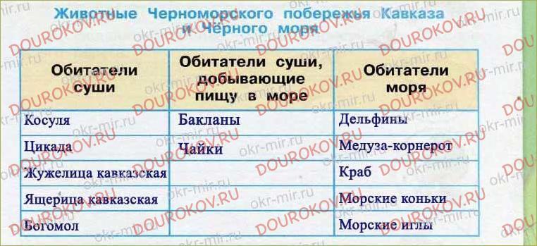 У Чёрного моря - 27