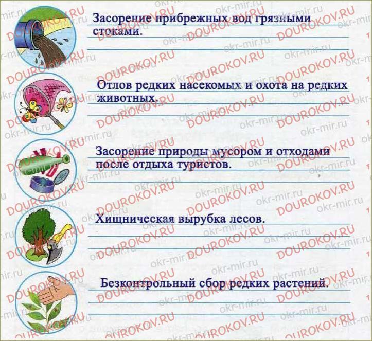 У Чёрного моря - 29