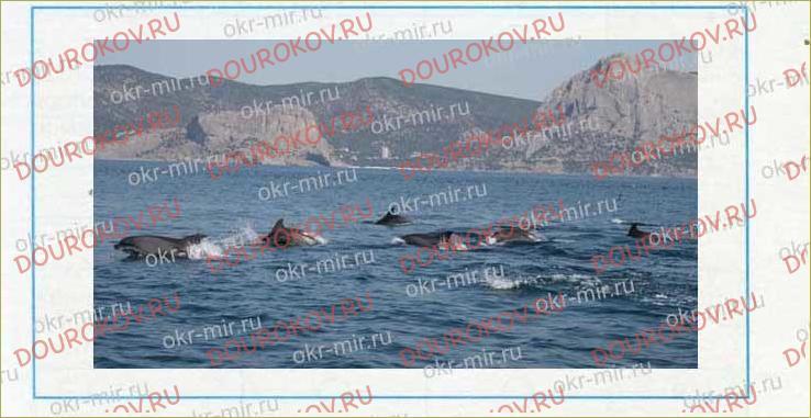 У Чёрного моря - 31
