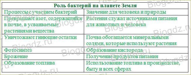 §10. Значение бактерий в природе и для человека - 1