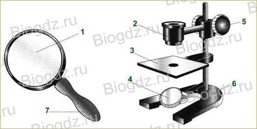 §6. Устройство увеличительных приборов - 1