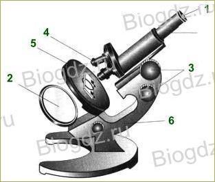 §6. Устройство увеличительных приборов - 2