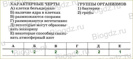 Тренировочные задания 3 - 1