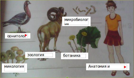 2. Наука о живой природе - 2