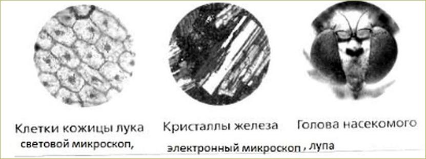 §4. Увеличительные приборы - 3