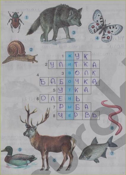 §21. Позвоночные животные - 5