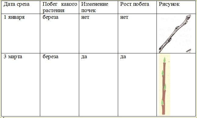Зимне-весенние задания - 2