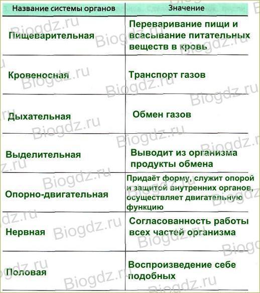 Тема 5. Органы и системы органов животных - 1