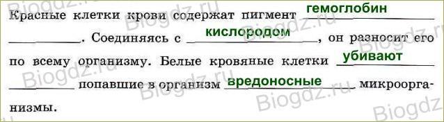 Тема 8. Транспорт веществ в организме - 3