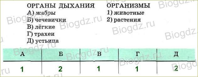 Тренировочные задания (1 ч) - 2