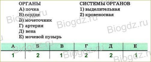 Тренировочные задания (2 ч) - 1