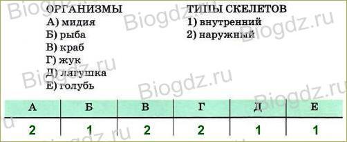 Тренировочные задания (2 ч) - 2
