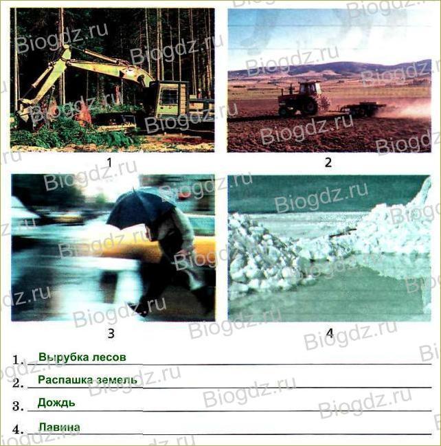 22. Среда обитания. Экологические факторы - 3