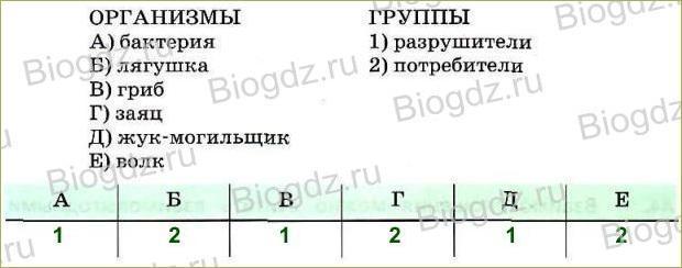 Тренировочные задания (3ч) - 1