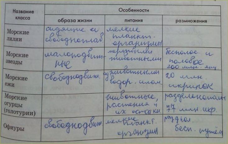 13. Тип Иглокожие - 3