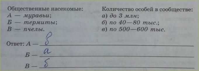 15. Класс Насекомые - 2