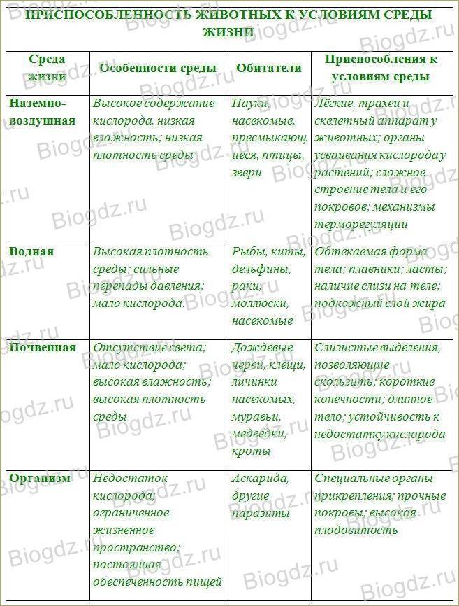 §2. Животные и окружающая среда - 1