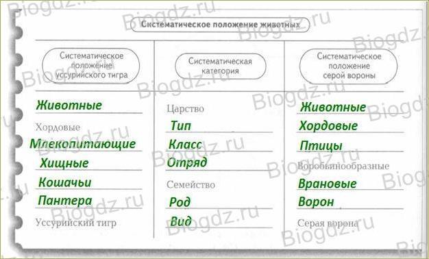 §3. Классификация животных и основные систематические группы - 2