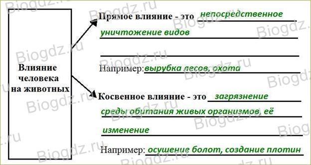 §4. Влияние человека на животных - 1