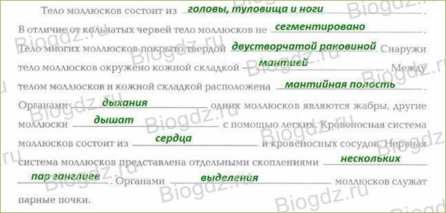 §20. Общая характеристика типа - 1