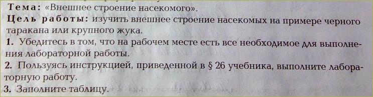 §26. Класс Насекомые - 1