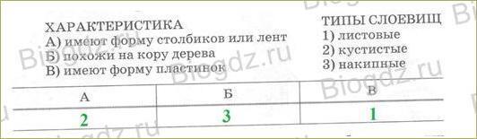 5. Тренировочные задания - 2