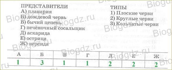 24. Тренировочные задания - 1