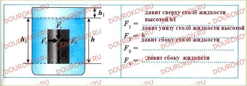 §50. Действие жидкости и газа на погруженное в них тело - 55